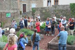 Les plantes aromatiques en cuisine @ Jardin médiéval (Rue Douves du Lion D'argent, derrière le CMB)