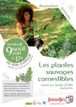 Les plantes sauvages comestibles @ Bois d'Amour - Théâtre de Verdure