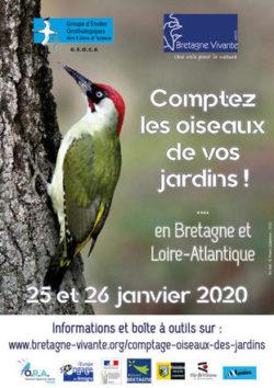 Réunion d'information | Oiseaux des jardins @ Centre culturel l'Ecusson